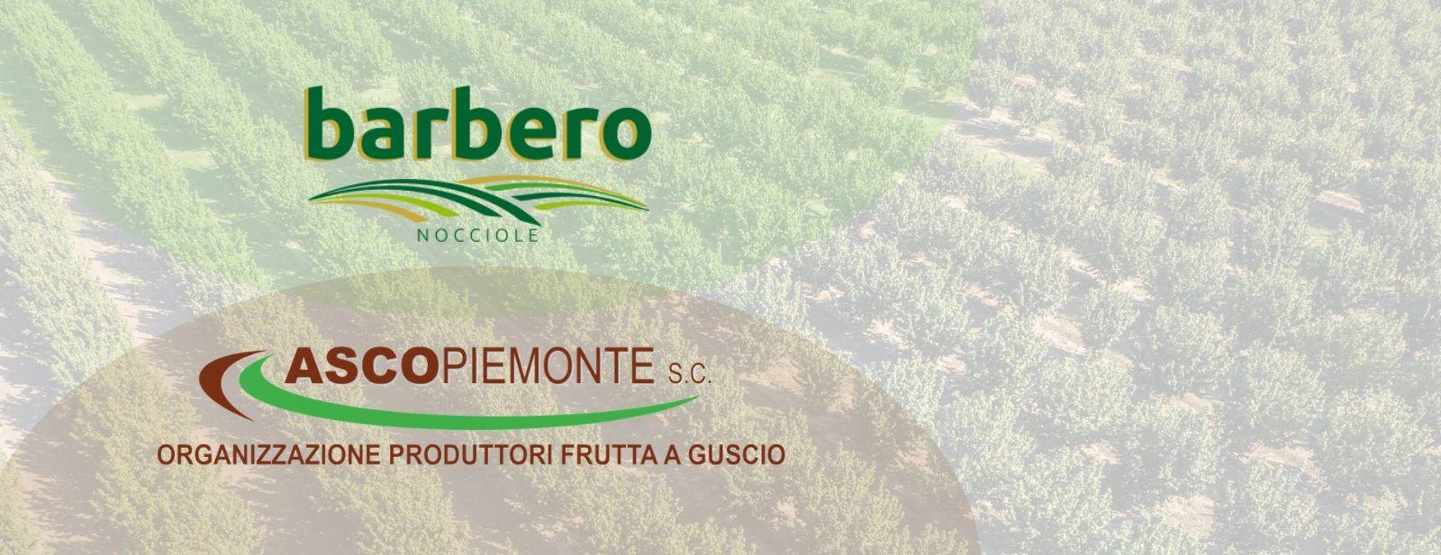 Partnership strategia: Ascopiemonte e Barbero